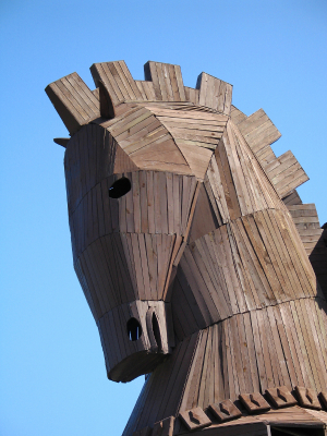 Do you have a Trojan horse for selling IT?
