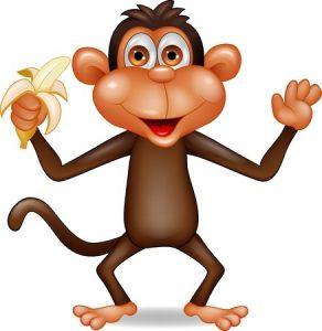monkey_s